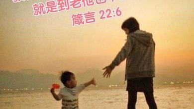 Photo of 21/8親親家長金句分享 Proverb sharing
