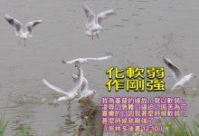 Photo of 23/10親親家長金句分享