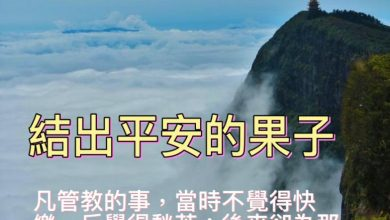 Photo of 31/10親親家長金句分享 Proverb sharing