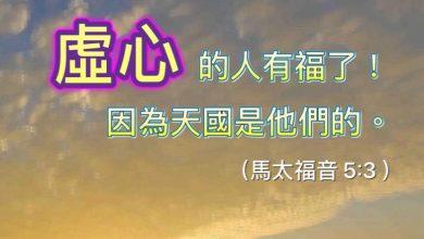 Photo of 20/11親親家長金句分享 Proverb sharing