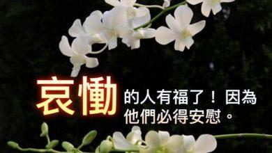 Photo of 27/11親親家長金句分享 Proverb sharing