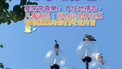 Photo of 4/12親親家長金句分享 Proverb sharing