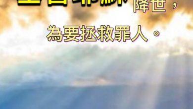 Photo of 18/12親親家長金句分享 Proverb sharing