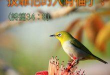 Photo of 12/2/2021金句分享