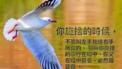 Photo of 26/2/2021金句分享