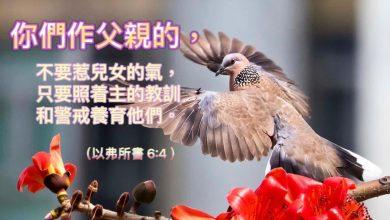 Photo of 23/4/2021金句分享