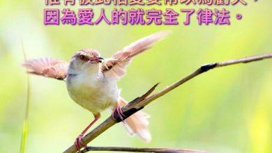 Photo of 14/5/2021金句分享