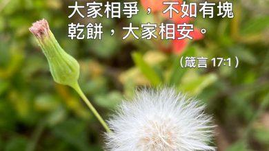 Photo of 28/5/2021金句分享