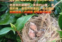 Photo of 4/6/2021金句分享