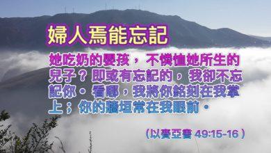 Photo of 11/6/2021金句分享